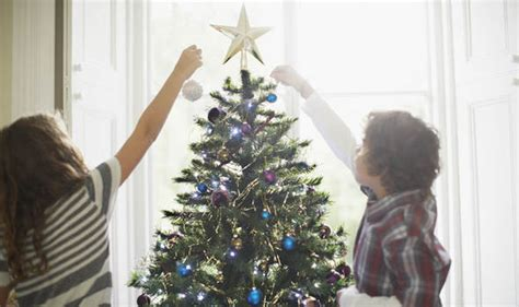 when should you put up a christmas tree why do we