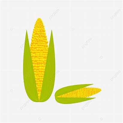Corn Cartoon Crops Vector Fresh Transparent Background