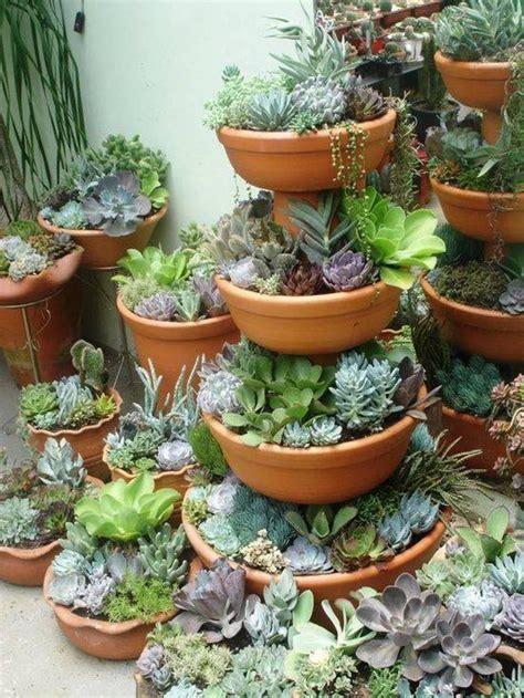 succulent pot ideas container gardening succulent ideas garden design ideas