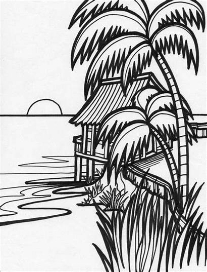 Coloring Pages Beach Sunset Tropical Drawings Flower