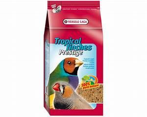 Graines Oiseaux Du Ciel : aliment graines oiseaux exotiques bec droit tropical finches prestige versele laga vaison ~ Melissatoandfro.com Idées de Décoration