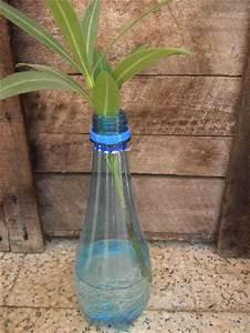 Oleander Stecklinge Wurzeln Nicht : oleander pflanzen botanik green24 hilfe pflege bilder ~ Lizthompson.info Haus und Dekorationen