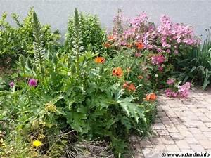Plantes Vivaces Pour Massif : planter des vivaces partout ~ Premium-room.com Idées de Décoration