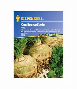 Sellerie Pflanzen Kaufen : kiepenkerl saatgut sellerie 39 prinz 39 dehner ~ Michelbontemps.com Haus und Dekorationen