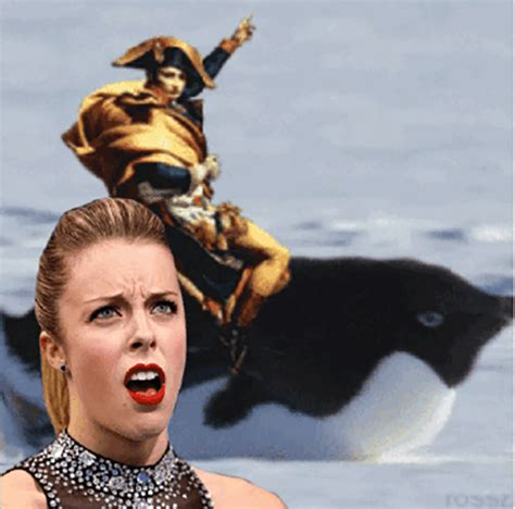 Ashley Wagner Meme - ashley wagner is the new face of olympic memes