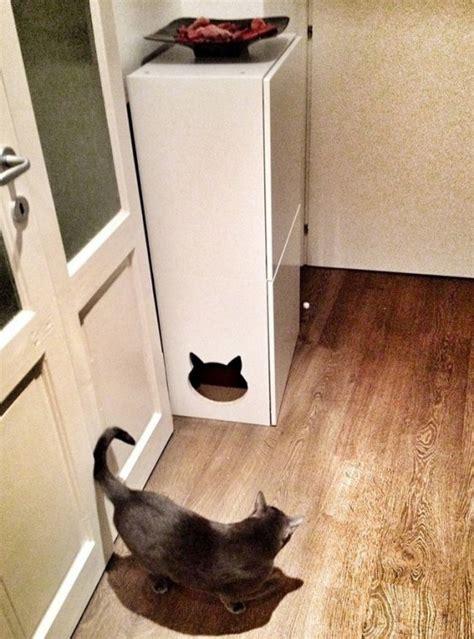 cool ways  hide  cat litter box digsdigs
