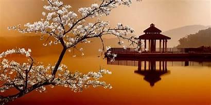 Oriental Scenery Sakura Landscapes Eastern Water Taiwan