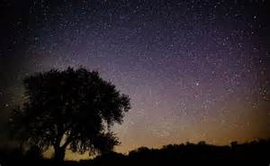 There Meteor Shower Tonight Picture