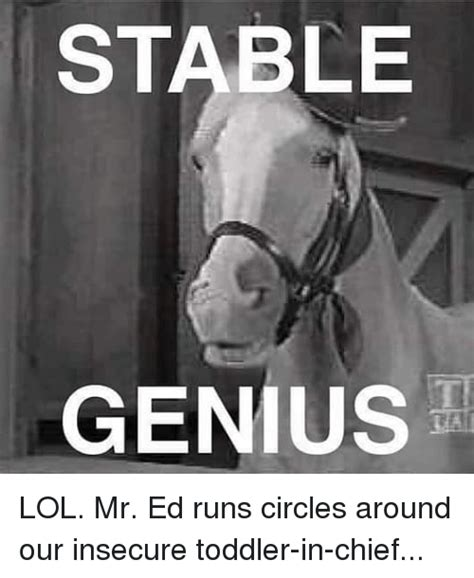 Mr Ed Meme - stable genius lol mr ed runs circles around our insecure toddler in chief lol meme on sizzle