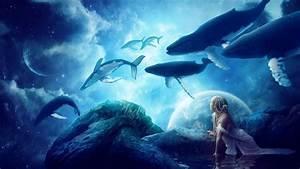 walvissen dromen hd desktop wallpaper: breedbeeld: high ...