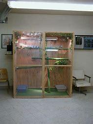 Best 25 Ideas About Iguana Cages