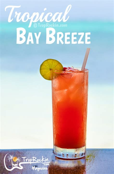 drink pic bay mixed drinks how to make a tropical rum bay