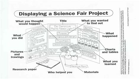 Sle Lava L Science Project Hypothesis by Science Fair Project Research Paper 28 Images Sc Fair