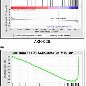 (PDF) AKN-028 induces cell cycle arrest, downregulation of ...
