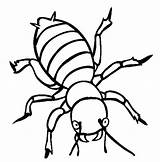 Coloring Potato Bugs Beetle Angry Utilising Button Sheet Grab Feel Well Please sketch template