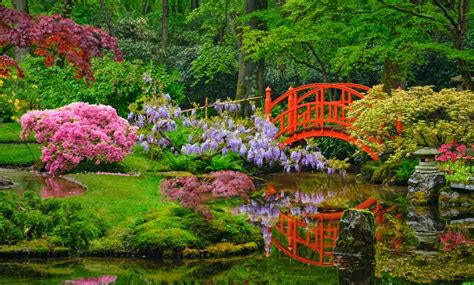 Japanischer Garten Amsterdam by Clingendael S Japanese Garden In The Hague Opens For