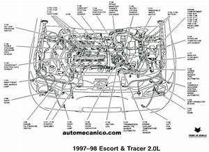 1998 Ford Escort Se Engine Diagram