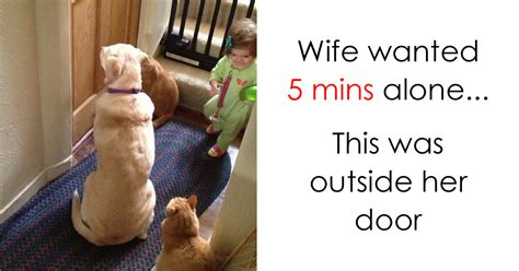 Funny Parenting Memes - 61 funny memes about work that you should laugh at instead of working virascoop