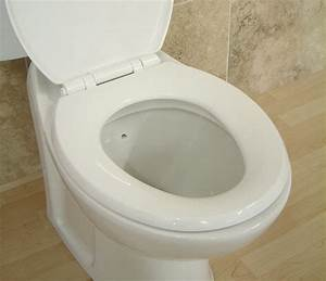 Why Do Public And Hotel Toilet Seats Have The Middle Part