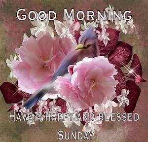 Good Morning, Have A Happy And Blessed Sunday Pictures ...