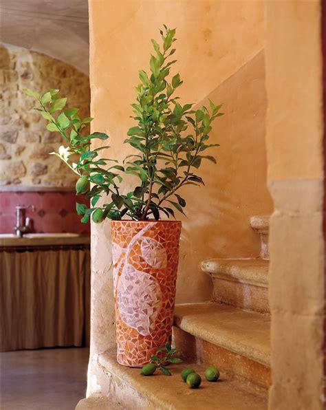 un vase en mosa 239 que de pots de fleurs
