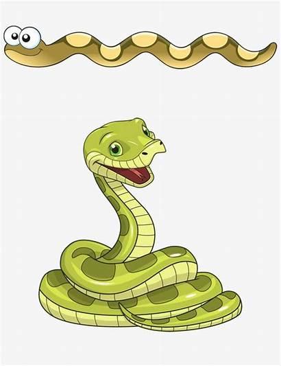 Snake Clipart Cartoon Cobra Python Snakes Psd