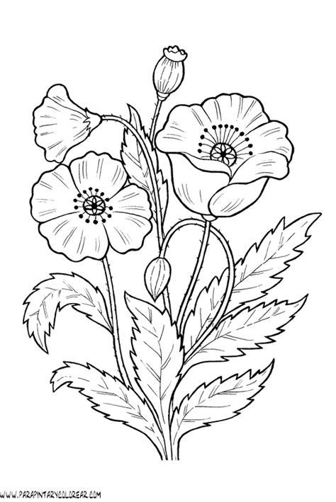 dibujos para colorear de flores amapolas 011 gif mothers