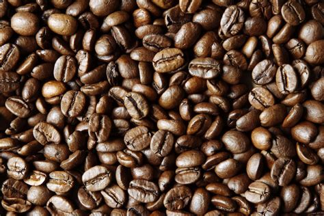 When the coffee beans are heated, as in the roasting process, these oils turn from solid to liquid and rise to the surface of the bean. What Does It Mean For Coffee Beans To Be Oily? | MNC