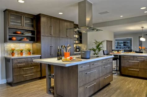 10 Modern Kitchen Ideas People Love  Mod Cabinetry