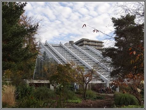 Botanischer Garten Bochum by Botanischer Garten Bochum Hunde Garten House Und Dekor