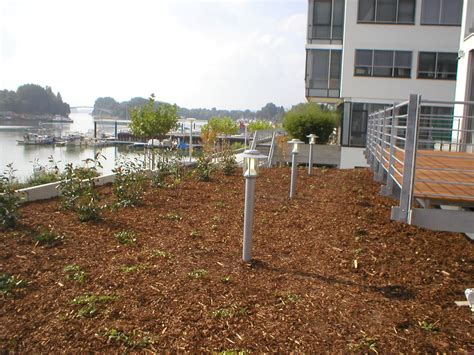Garten Landschaftsbau Ochtendung by Pflanzendesign Pflanzungen Pflege Herny Klammer Garten