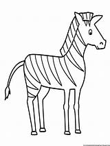 Zebra Coloring Pages Animals Printable sketch template