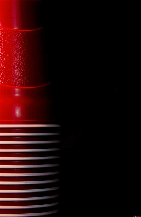 red solo cup photography contest  pictures page