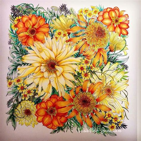 Coloring Flowers With Colored Pencils by 11 Best Watercolor Pencil Images On