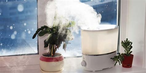 benefits   humidifier   cold winter months