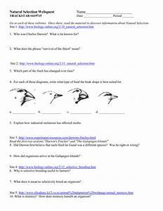 Natural Selection Webquest