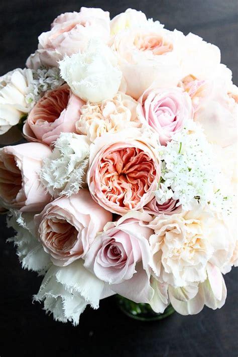 1000 Ideas About Juliet Garden Rose On Pinterest Hot