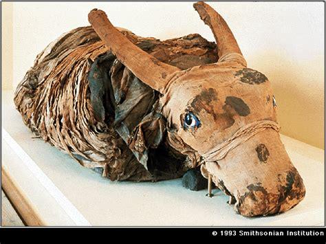 mummies caustic soda