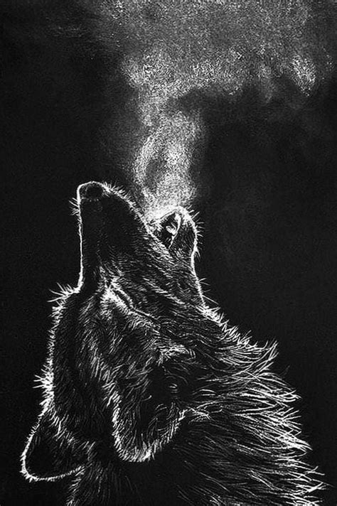 black wolf wallpapers pinterest wolf wallpaperspro