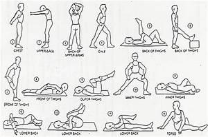 Flexibility Article  U2013 11  08  2008  U2013 By Stuart Wade