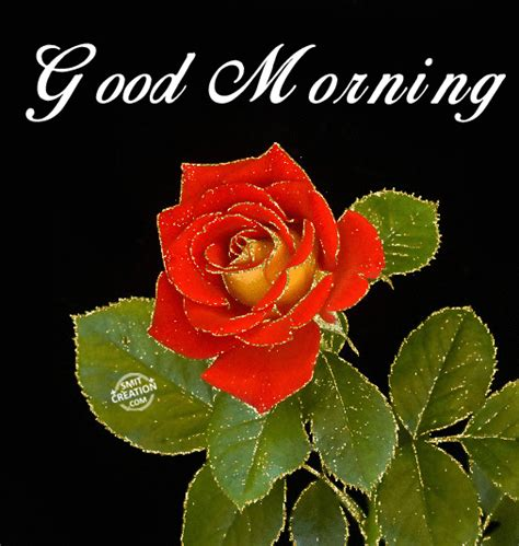 Wonderful good morning whatsapp gifs are out now. Good morning gif download for whatsapp 6 » GIF Images Download