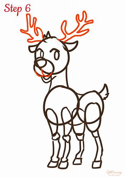 Reindeer Draw Drawing Step Lines Curved Face