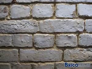 Refaire Un Mur Humide : conseil pour les r parations d 39 un mur d 39 une ancienne cave ~ Premium-room.com Idées de Décoration
