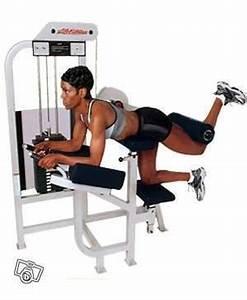 Appareil Musculation Maison : appareil muscu fessier muscu maison ~ Melissatoandfro.com Idées de Décoration