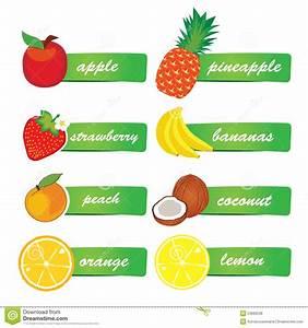 Vector Fruit Labels Stock Vector  Image Of Element