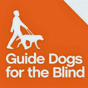 Guide Dogs for the Blind - YouTube