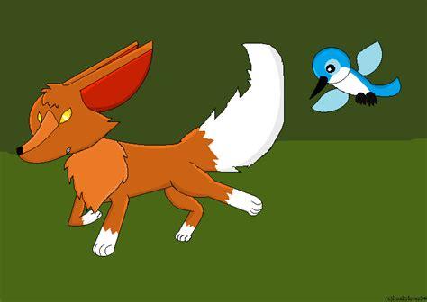 animal jam fox  humming bird  animaljamlover