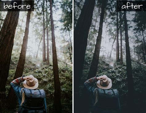 Adobe commissioned me to create seven lightroom presets for landscape and travel photography that you can download for free on adobe. Dark forest mobile lightroom preset (DNG) - Svg Ocean