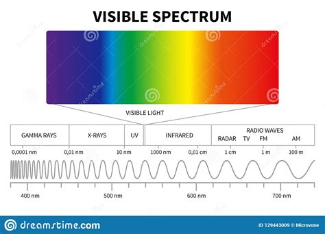Frequency Of Visible Light by Visible Light Diagram Color Electromagnetic Spectrum