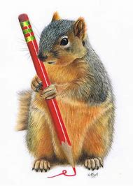 Colored Pencil Drawing Squirrel